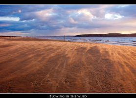 Blowing in the wind by Jon4H