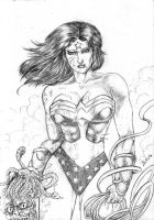 Wonder Woman by midknight23