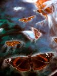 painting butterflies by Gwillieth