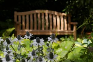 A bench in the background 2 by Eiande