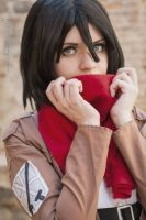 Shingeki No Kyojin - My family is you by YuukiCosplayer