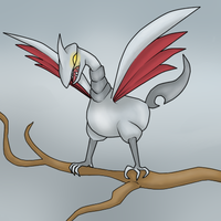 Pokemon meme Day 3: Favorite Flying Type Pokemon by garbagerocks