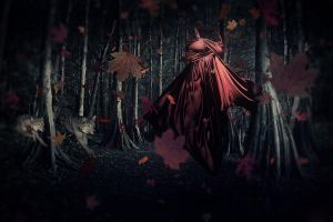 Little Miss Red Riding Hood by RichardGeorgeDavis
