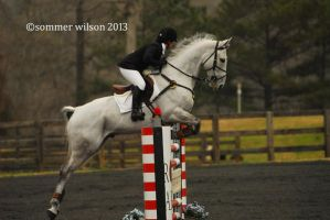 PPF March Horse Trials by zeeplease