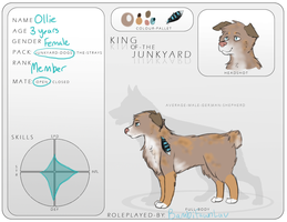 KotJ | Member | Ollie | Application Sheet by bambifawnluv