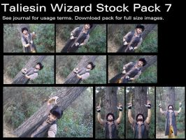 Taliesin Wizard Stock Pack 7 by Durkee341