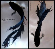 Betta Fish Moments by JenniferTheFirst