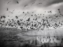 air traffic by VaggelisFragiadakis