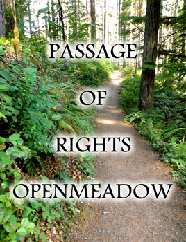 Passage of Rights Cover by Lokabrenna-89