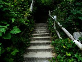 Stairs to nowhere.. by TMNT224