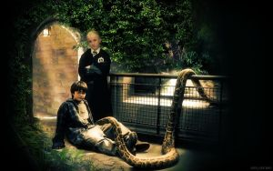 He would choose Slytherin by AnnGeea