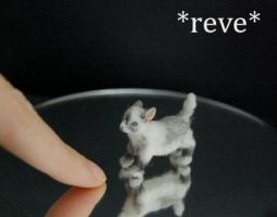 Handmade Miniature Pygmy Goat Kid Sculpture by ReveMiniatures