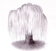 Weeping Willow tree... by Miss-Chibi