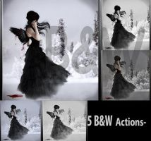 Free 5 Black and White Photoshop Action by Designslots