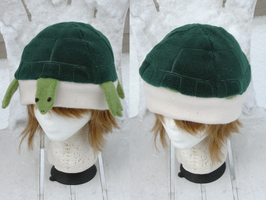 Turtle Hat by clearkid