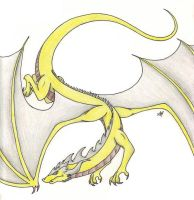 VICTORTKY DORAGON COLOURED by victortky