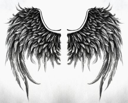 fallen angel wings design No4 by SwarzezTier