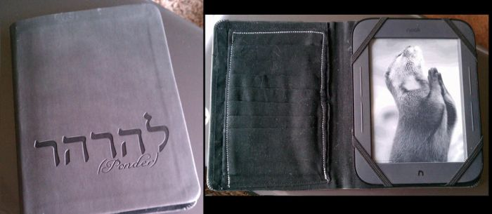 My Nook Case by technoplasma