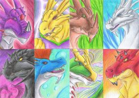 Elemental dragons by Kiminuria