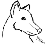Practice Sketch: Wolf by Audrykuu