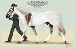 Showing CF DeMarco by JNFerrigno