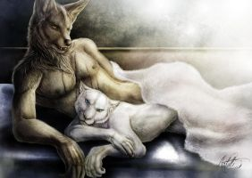 The morning comes... - CM by Artali-Artist