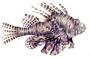 LION FISH by AURORY
