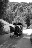 Carriage by like-a-seahorse