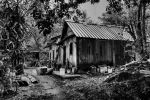 Abandon Kampung House In Palau Ubin by iceburn1207