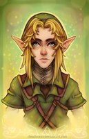 - Knight of Hyrule - by Cloudnixus
