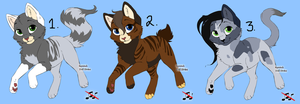 Draw To Adopts by Shadowpaw909