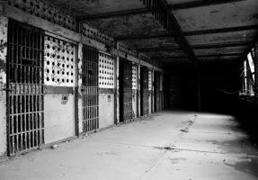 Jailhouse Doors by Mad-Dawg09