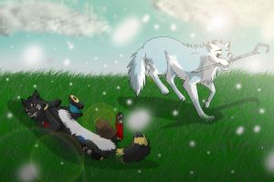 Commision - snow! by Mana-ghostwolf