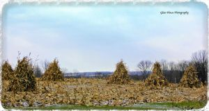 Winter Field by GlassHouse-1