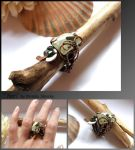 Seri- wire wrapped copper ring by mea00