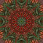 Christmas Star 2014 by MarvickSands
