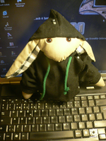 Lil' Anarchist in hoodie by topios