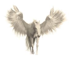 Winged horse by Jingte