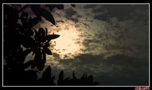 Moon.......In.......rOof by shiuart