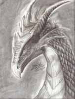Dragon Portrait by Dracohoudini
