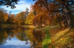 The colours of Fall... _166 by my-shots