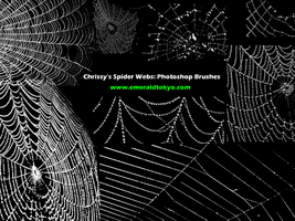 Chrissy's Spdr Web PS Brushes by EmeraldTokyo