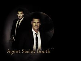 Agent Seeley Booth by LeavesFallingUp14