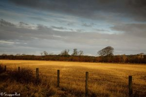 Open Countryside by SnapperRod