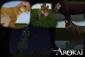 Arokai Feline Collage by poplet