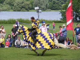 Jousting - Knight 91 by Axy-stock