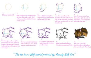 Wolf Tutorial - half facing u by AnarchyWolfKira