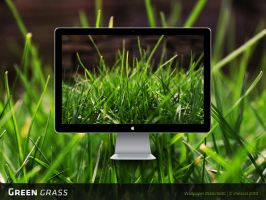 Green Grass Wallpaper by chriscol
