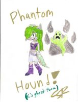 Phantom Hound by Mighty-C-amurai