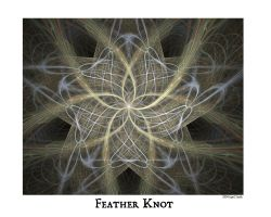Feather Knot by aibrean